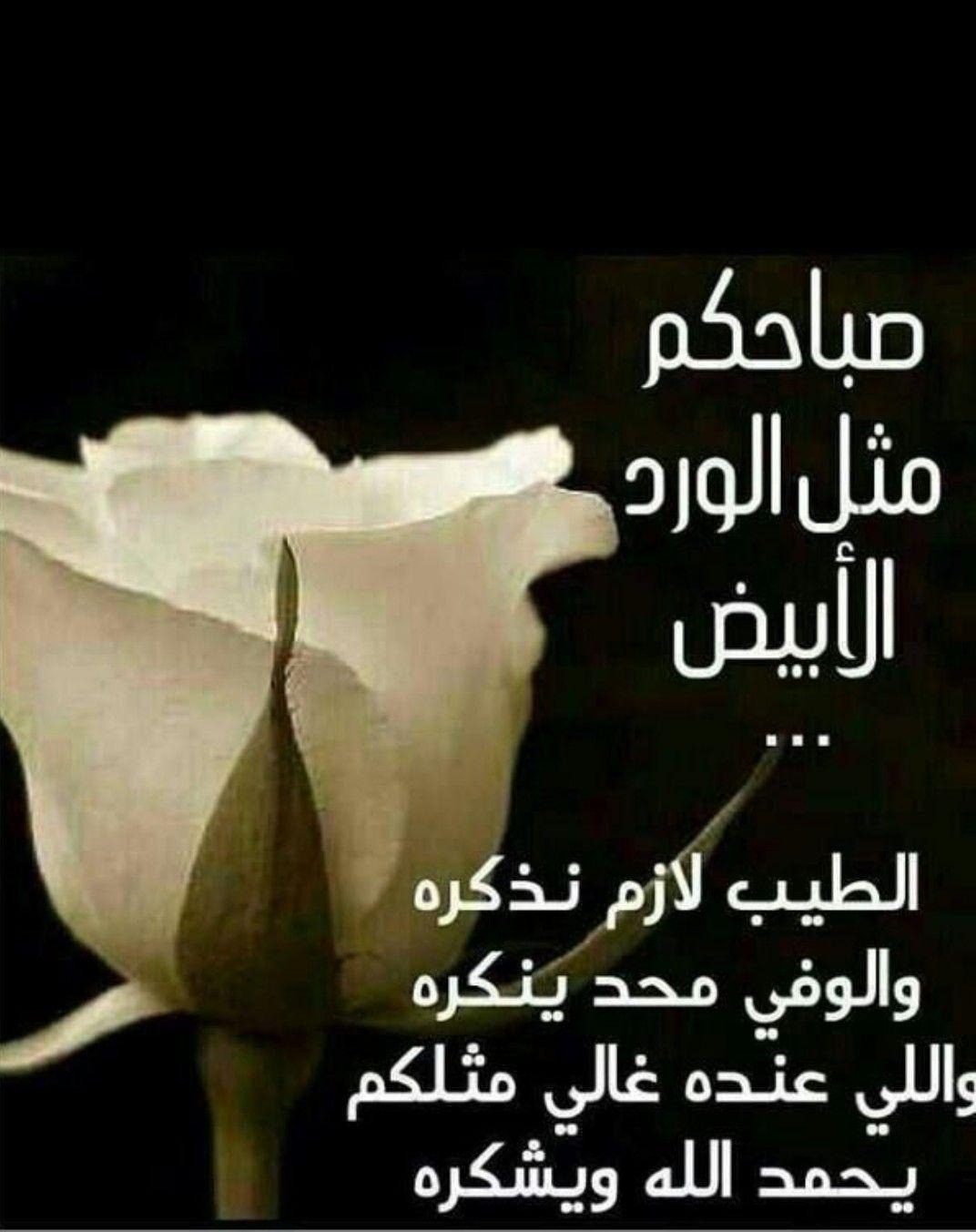 صورة شعر في صباح الخير , اجمل ابيات الشعر في صباح الخير