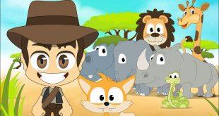 صور معنى كلمة حيوانات بالانجليزي , شرح كلمه حيوانات بالانجليزي