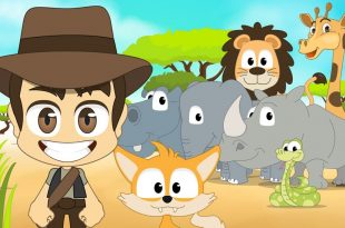 صورة معنى كلمة حيوانات بالانجليزي , شرح كلمه حيوانات بالانجليزي