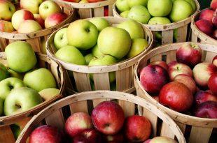 صور ما فوائد التفاح , فوائد التفاح الصحية