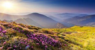 صورة صور طبيعية , اجمل مناظر خلابة للبيئة