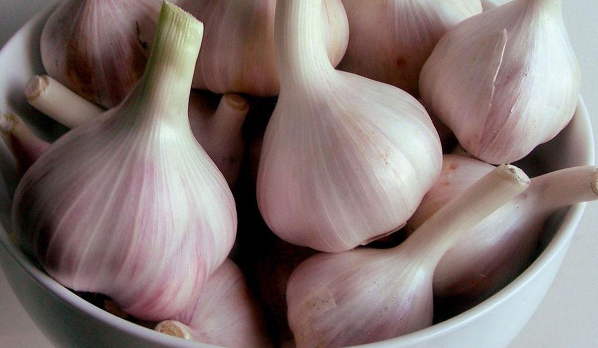 صور ماهي فوائد الثوم , مزايا الثوم على للصحة