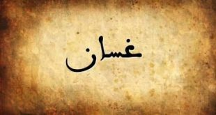 صور معنى اسم غسان , تعريف وصفات حامل اسم غسان