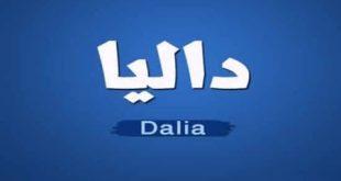صور معنى اسم داليا , هل تعلمين معني اسم داليا وصفات صاحبة الاسم