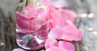 صورة فائدة ماء الورد , تاثير ماء الورد علي الوجه