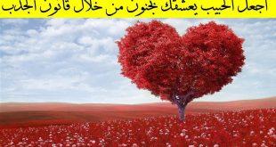 صور قانون الجذب في الحب , ما هو قانون الجذب في الحب