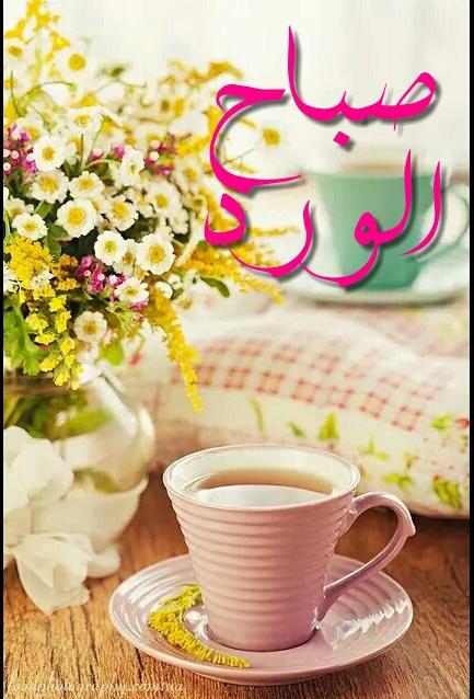 صورة صور حلوة صباح الخير , اجمل صباح عليكم يا حلوين 11787 4