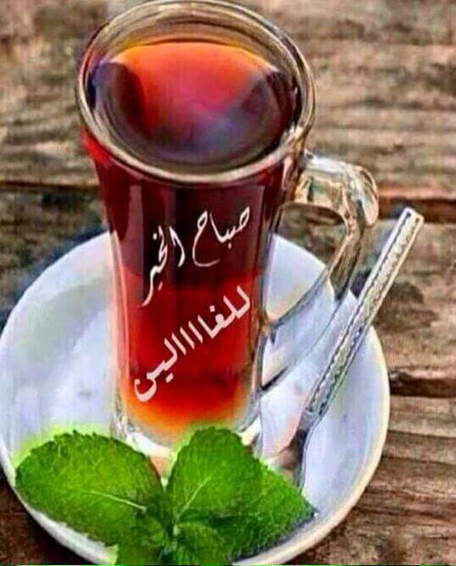 صورة صور حلوة صباح الخير , اجمل صباح عليكم يا حلوين 11787 5
