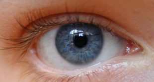صورة صور العين , للعين سحر خاص