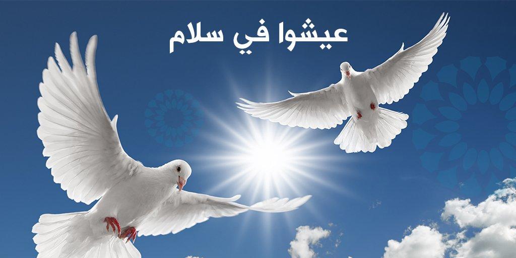 صورة صور عن السلام , السلام لغه الشعوب العريقه