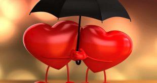 اتعلم ماهو الحب والغرام مفهوم الحب