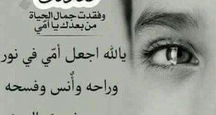 وحشتيني ياامي مش قادر علي فراقك كلام حزين عن فراق الام