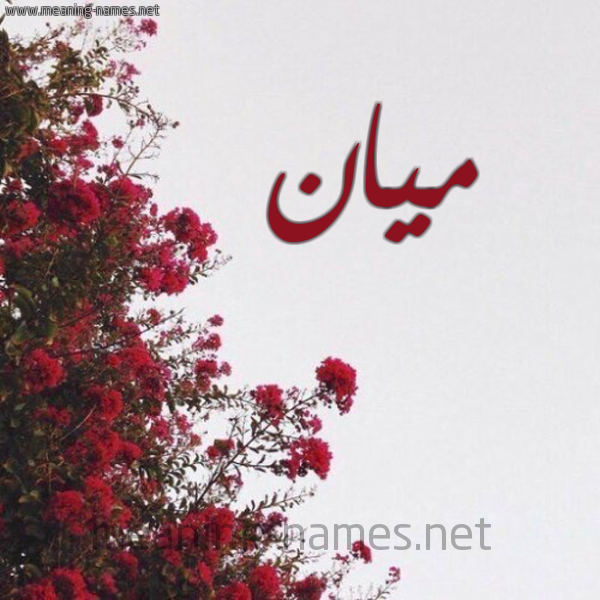 يعني ايه ميان معنى اسم ميان المنام
